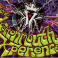 The Kottonmouth Experience